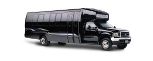 Party Bus ford e450