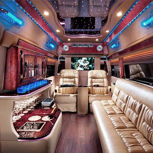 Party Bus & Van Rentals
